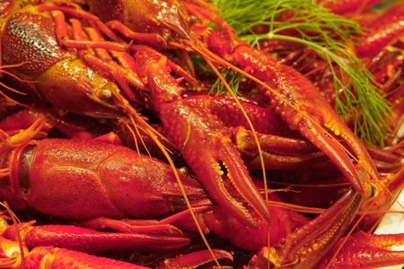 decapod: Close-up of boiled crayfish ready to be served