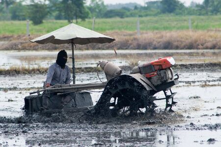 paddle wheel: Farmer in Ang Thong, Thailand preparing the paddy field before planting rice.