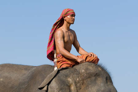 mahout: SURIN - NOVEMBER 21: Proud mahout riding his elephant during The Annual Elephant Roundup on November 21, 2010 in Surin, Thailand.