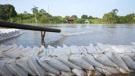 erected: Dike made from sandbags erected to prevent the Chao Praya River ffrom flooding the city. Editorial
