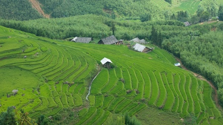 lao: Farm buildings and rice terraces in Sapa, Vietnam Stock Photo