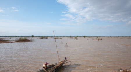 inundated: Rice fields in Cambodia overflowed by Tonle Sap river during the monsoon season. Stock Photo