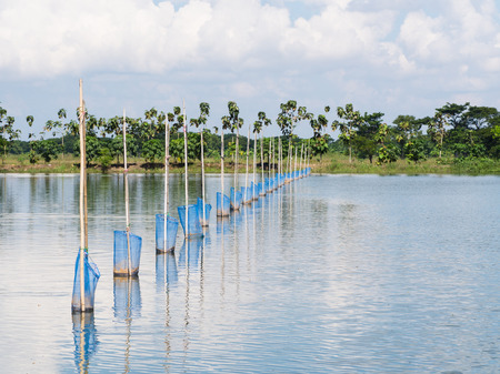 fish farm: Simple devices for feeding Tilapia fish at fish farm at the Irrawaddy Delta in Myanmar Stock Photo