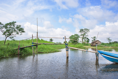 majority: Farmland and canals at the Ayeyarwaddy Region in Myanmar. The region is home to the majority of rice as well as fish farming in Myanmar, but suffers from bad weather and flooding during the monsoon season.