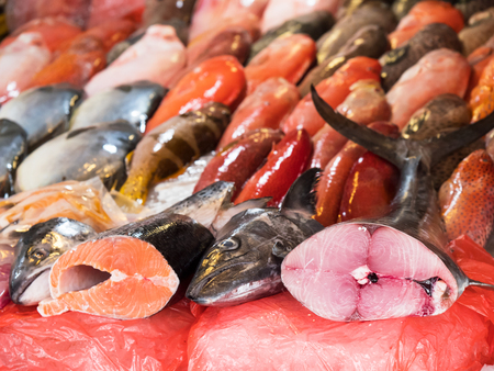 fish vendor: Salmon and tuna, two of the worlds most popular fish species, with local fish in the background, at a fish market in Manila, The Philippines. Shallow depth of field with the tuna in focus. Stock Photo