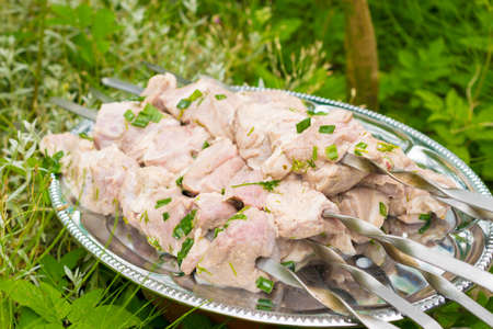 family reunion: Marinated shashlik prepared for grill. Woman prepare meat for grill. Friends meeting, family reunion, leisure and weekends.