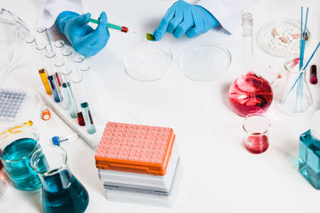 scientists makes injection into the plant. in laboratory. drug discovery, pharmacology and biotechnology concept. science and medical research background with pills and chemical tubes. top view.