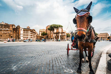 Roma, Italy - april 17, 2018: Colosseum and Forum Roman ruins. horse drawn carriage with tourists in Rome. Italy capital landmarks. Colosseum or Amphitheatrum Flavium. Travel, tourism and attractions