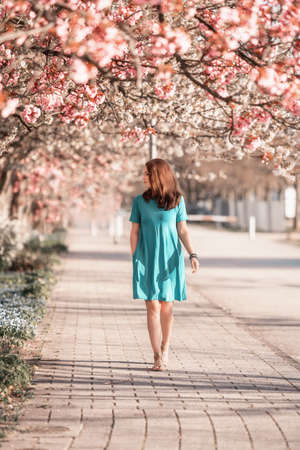 Young beautiful woman is walking in blooming sakura avenue. Happy mothers day or happy woman day. Freedom concept.