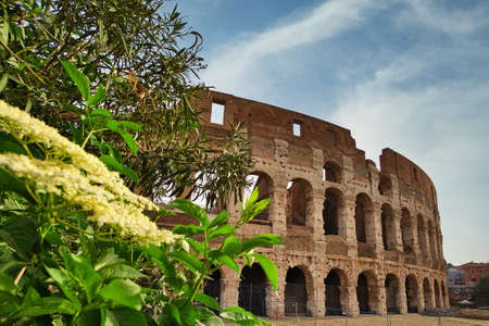 Colosseum. Rome amphitheatre and Italy landmark. Travel and tourism