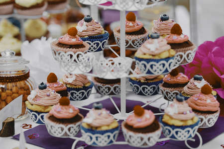 Cupcakes. Event desert and wedding catering background.