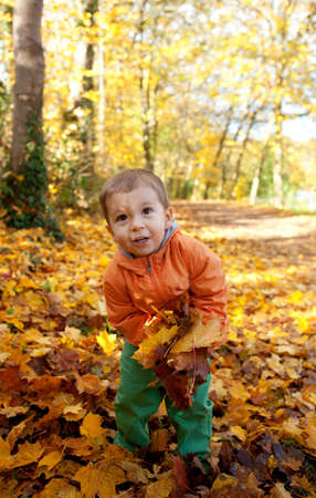 Adorable toddler boy with maple leaves at sunny autumn day photo