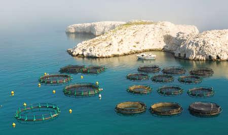 marseille: Viskwekerij op Frioul eiland in de buurt Marseille, Frankrijk