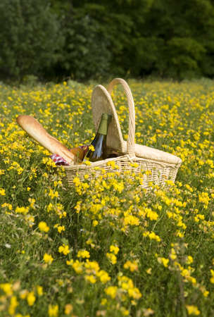 Picnic basket with wine, bread and fruits outdoors in yellow flowers photo
