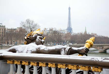 Winter in Paris. Pont Alexandre III under snow Reklamní fotografie - 12425071