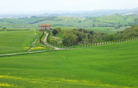 Typical Tuscany landscape with a farmhouse photo