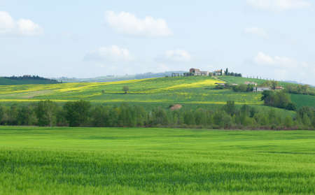 Typical Tuscany landscape with beautiful hills Stock Photo - 13508520