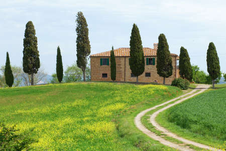 Typical Tuscany farmhouse with cupressus photo