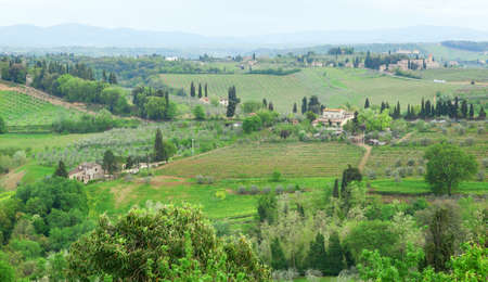 Typical Tuscan landscape with cypress, vineyards and farm houses photo