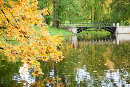 Autumn in Pushkin, Saint-Petersburg, Russia Stock Photo - 15776050
