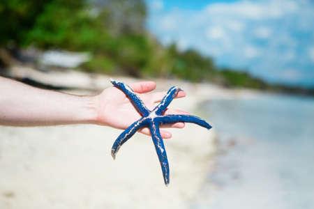 Man holding blue starfish on perfect tropical white sand beach  photo