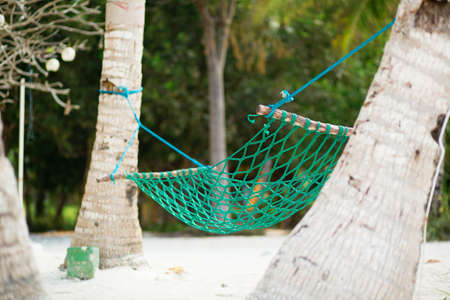 Palm trees and hammock on perfect white sand beach photo