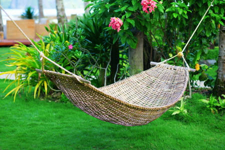 Hammock in a beautiful tropical garden photo