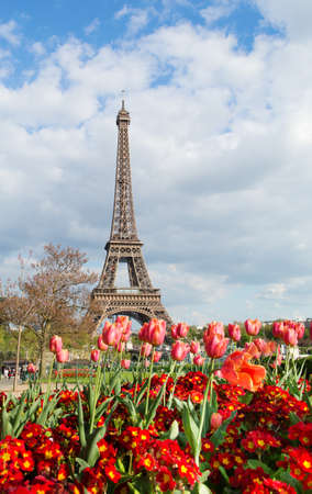 eiffel: View of the Eiffel tower with beautiful tulips