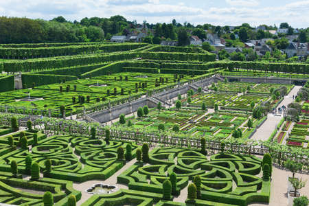 topiary: Topiary in the Villandry castle, France