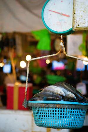 Pesce fresco pesare sulla bilancia su un mercato Archivio Fotografico - 22776525