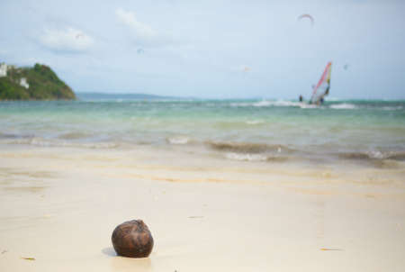 Coconut on a beach and surfers in background photo