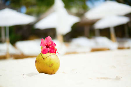 drinking straw: Noce di cocco con cannuccia sulla spiaggia tropicale