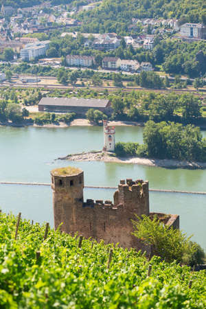 rhein: Ehrenfels Castle near Rudesheim am Rhein, Germany Stock Photo