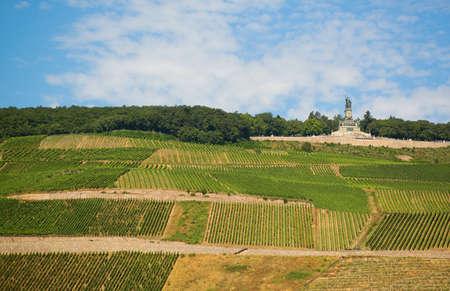 rudesheim: Vineyards and Germania monument near Rudesheim am Rhein