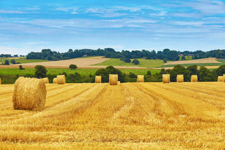 agriculture landscape: Golden hay bales in French countryside