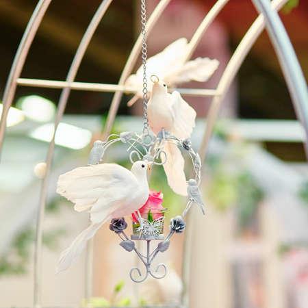 beaks: Bella decorazione per un ricevimento di nozze - due colombe bianche che tengono anelli d'oro nel becco