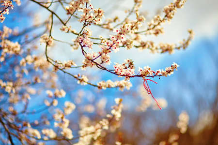 Martisors, Symbole der Beginn des Frühlings Standard-Bild