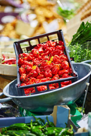 Fresh healthy bio red pepper on London farmer agricultural market photo