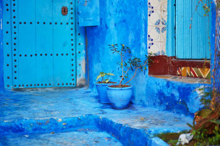 flower in pot: Flower pots on a street in Medina of Chefchaouen, Morocco, small town in northwest Morocco known for its blue buildings