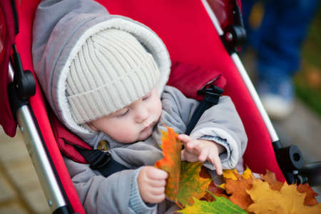 9 months: Cute 9 months boy in stroller playing with autumn leaves