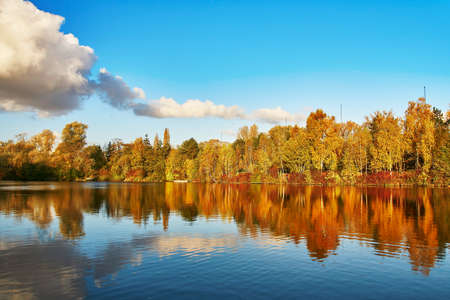landscape: Bright autumn trees with their reflection in water