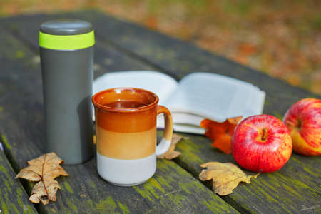 vaccuum: Vaccuum flask with hot tea, mug, apples and book on a picnic table on a fall day Stock Photo