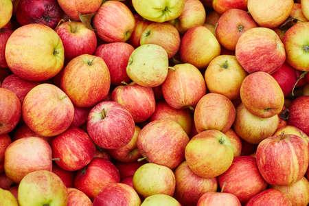 pomme rouge: Frais organique pommes fond Banque d'images