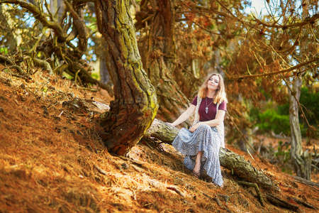 frisco: Beautiful young romantic girl sitting on the tree trunk in Presidio park in San Francisco, California, USA
