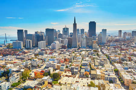 aerial view city: Scenic view of downtown in San Francisco, California, USA