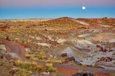 petrified: Petrified logs in the Painted desert and Petrified forest national park with full moon, Arizona, USA