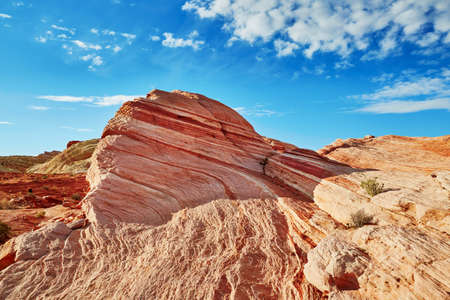 sedimentary: Striped colorful sedimentary rock formation called The Wave in Valley of the Fire national park in Nevada, USA Stock Photo