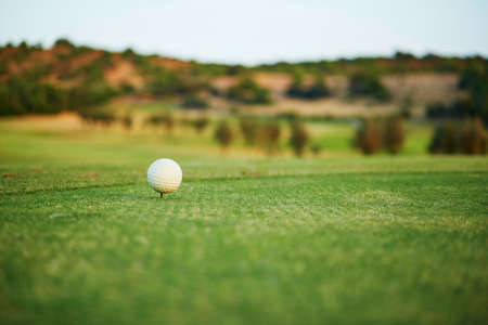 Closeup of golf ball on the green Stock Photo