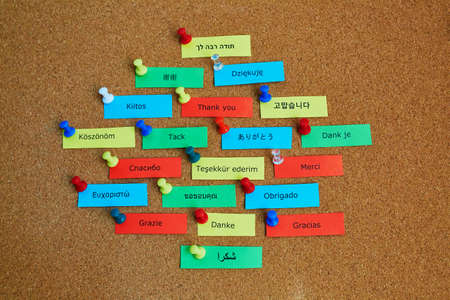 localization: Word Thank you written in different languages on colorful paper notes pinned to cork board