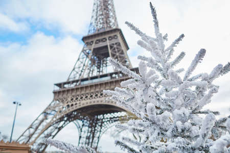 Christmas tree covered with snow near the Eiffel tower in Paris, France Standard-Bild